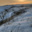 Winter landscape with snow — Stock Photo #19490633