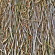 Straw roof background - Stock Photo