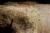 Golden straw in a barn stacked on the farm — Stock Photo
