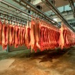Fresh meat in a cold cut factory - Stock Photo