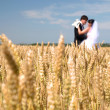 Golden ears on the field, in the background of the newlyweds, su — Stock Photo