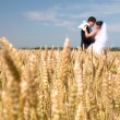 Stock Photo: Golden ears on the field, in the background of the newlyweds, su