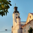 Catholic cathedral church in Uzhgorod — Foto de Stock