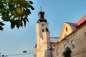 Katholieke kathedraal kerk in oezjhorod — Stockfoto