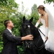 Wedding bride and groom on horseback — Stock fotografie