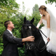 Wedding bride and groom on horseback — Stock Photo
