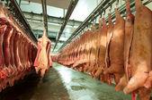 Čerstvé maso v továrně na studený řez — Stock fotografie