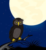 Owl sits on tree in the night — Stock Vector