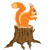 Squirrel sits on hemp — Stock Vector