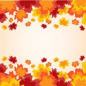 Färgstarka bakgrund från hösten blad — Stockvektor