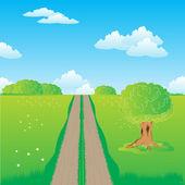 Bozkır içinde kırsal yol — Stok Vektör
