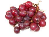 Grape on white — Стоковое фото