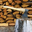 Tools axe and birch log - Zdjęcie stockowe