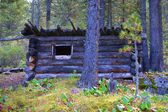 Old lodge in wood — Stock Photo