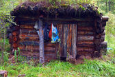 Caccia in legno — Foto Stock