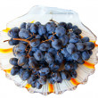 Blue grape in plate — Stock Photo