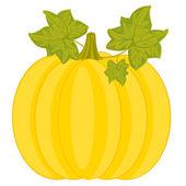Ripe pumpkin — Stock Vector