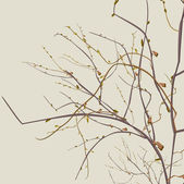 Autumn dead branches — Vector de stock