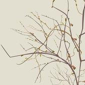 Podzimní uschlé větve — Stock vektor