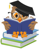 Wise owl reading book — Stock Vector