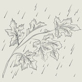 Maple tree branch in the rain — Stock Vector