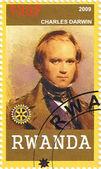 Charles Darwin — Stock Photo
