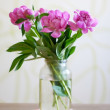 Beautiful bouquet of flowers — Stock Photo #5802868