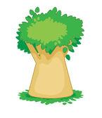 Baobab — Stock Vector