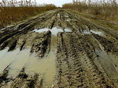 Dirty rural road — Stock Photo