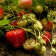 Strawberries — Stock Photo #47604551