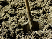 Shovel in the ground  — Stock Photo