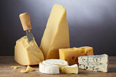 Still life with cheese — Stock Photo