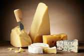Various types of cheese — Photo