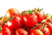 Pomodori freschi — Foto Stock