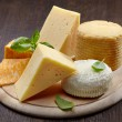 Various types of cheese — Foto Stock