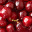 Stock Photo: Red cherries background