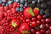 Various berries background — Stock Photo