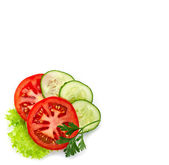 Various fresh vegetables — Stock Photo
