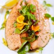 Steamed trout — Foto Stock
