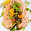 Steamed trout — Stock fotografie