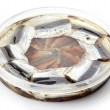 Salted anchovies in plastic container — Stock Photo