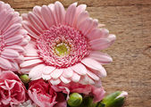 Pink flowers closeup on a wood background — Stockfoto