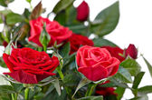 Czerwone róże — Zdjęcie stockowe