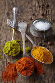Various spices on a dark background — Foto Stock