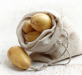 Fresh raw potatoes — Stock Photo