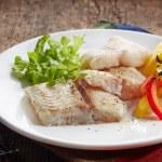 Fried pangasius fish fillet pieces — Stock Photo #49360843