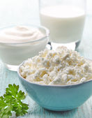 Fresh cottage cheese and dairy products — Stock Photo