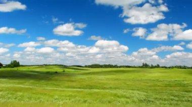 Summer meadow, blue sky, timelapse — Stock Video