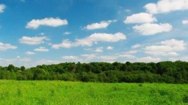 Landscape, blue sky, timelapse — Stock Video