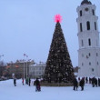 图库视频影像: City Christmas Tree, Vilnius Lithuania